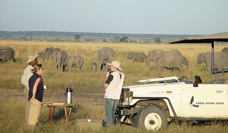 Elephants on a Safari with Chobe Safari Lodge